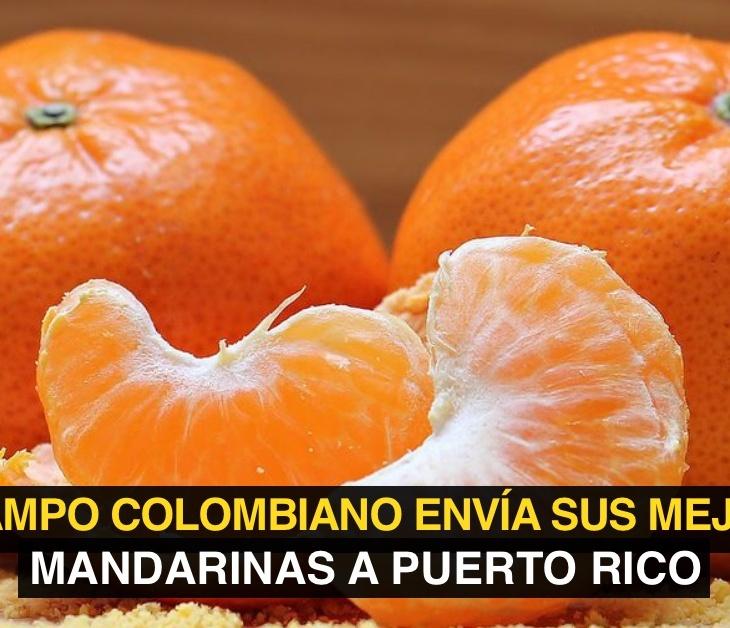 Mandarinas Colombia